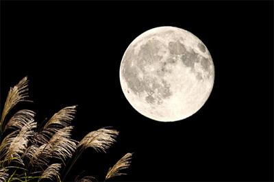「中秋の名月」の意味は、「秋の真ん中に出る満月」です。