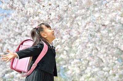 開花日が3月23日、満開日が3月29日