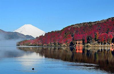 そんな箱根の紅葉、例年と比べ2019年はどうなんでしょう?