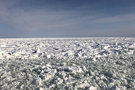流氷は圧巻でした!